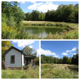 CATSKILLS OPPORTUNITY!  - Stream & ponds